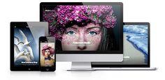 ¿Cómo elegir un tema para tu web o blog en WordPress? | Antonio Painn