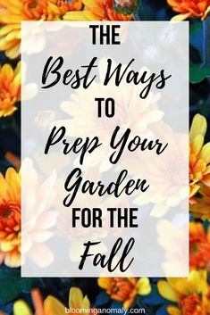 The weather is getting cooler in many areas, which means fall is just around the corner. Is your garden ready for the fall? Here is a collaborative post on the best ways to prep your garden for the fall. Cold Climate Gardening, Bulbs And Seeds, Garden Organization, Advertisement Images, Weather Change, Top Soil, Bright Flowers, Autumn Garden, Planting Seeds
