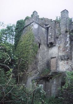 McMahon Castles in County Monaghan