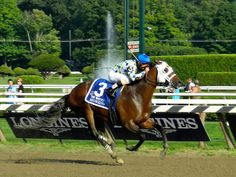 Moreno wins the Whitney Handicap and is Breeders' Cup Classic-bound!