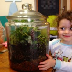 Our fairy garden terrarium. Fun and will be a lesson on the cycle of water.