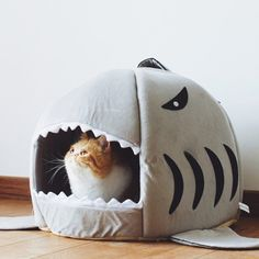 Best Quality Shark Warm Dog House for Cat Kitten Dog Pet Sleeping Sofa Bed Puppy High Quality Indoor Washable Pet House Mat Tent Warm Dog House, Cheap Cat Beds, Cat Kennel, Bed Mats, Cat Cafe, Cat Supplies, Pet Beds, Cats And Kittens, Funny Cats