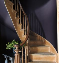 Benjamin Moore Just Announced Their 2017 Color of the Year (And It's Not White This Time) — Benjamin Moore's Shadow is a rich, royal amethyst