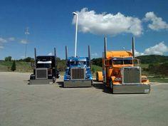 3 Peterbilts Show Trucks, Big Trucks, Peterbilt 379, Vehicles, Lowrider, Rigs, Distance, Places, Hot