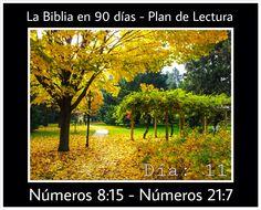 La Biblia en 90 Días - Plan de Lectura #Biblia #90 #dias #leer #plan #lectura