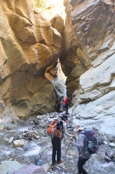 Ladak - Zanskar 2015 - Uroš Sever - Spletni albumi Picasa Antelope Canyon, Album, Nature, Picasa, Naturaleza, Nature Illustration, Off Grid, Card Book, Natural
