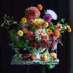 White Earthenware No. Fake Flower Arrangements, Fake Flowers, Amazing Flowers, Zinnias, Dahlias, Coral Orange, Flower Photos, Earthenware, Color Inspiration