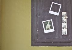 Polaroid Magnet Frames (perfect for the mini-fridge!)