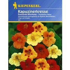 PN23672 Pflanzen - Saatgut - Blumensamen - Rankender Kapuzinerkresse-Mix,1 Portion