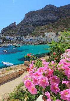 Egadi Islands, Sicily, Italy (by Robyn Hooz)
