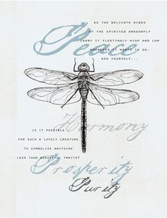 Dragonfly drawing with symbolism. All cards come with a matching envelope. Shipping for 1 card is $1.00 to cover postage and shipping envelope. If purchasing multiple cards, there is no additional shipping charge. (Orders shipped out of US will incur a .03 charge for additional cards.) ++(see wholesale info for shipping costs)++ ++Please contact/convo me for resale/wholesale pricing.++ If purchasing for resale/wholesale price, the card also comes in a cello sleeve. ++(I will...