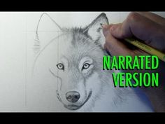 How to Draw a Wolf (Narrated) By Mark Crilley. I recently completed this art project, an it turned out great! He walks you through everything except some of the shading. Other than that, it's great!