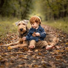 Took a family walk this evening. #October #fall #leaves #airedale #airedalesofinstagram #dogsofinstagram #doglover #gapkids