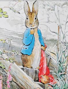 Peter Rabbit by Beatrix Potter Rabbit Illustration, Illustration Art, Beatrix Potter Illustrations, Alfabeto Animal, Beatrice Potter, Peter Rabbit And Friends, Year Of The Rabbit, Benjamin Bunny, Rabbit Art