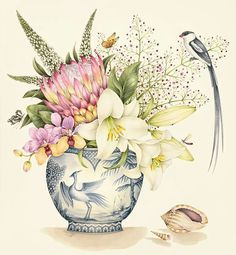 Kelly Higgs Botanical Art.  Protea and Lilies.