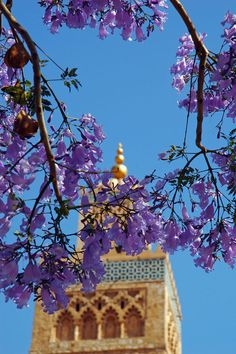 .. A Scent of Andalucia by DonGusti    The minaret of the Koutoubia Mosque, Marrakech, Morocco