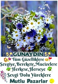 Pazar resim 1 Diy And Crafts, Messages, Plants, Education, Plant, Text Posts, Text Conversations, Planets
