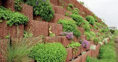 Pflanzringe setzen und begrünen - Eigenschaften und Einsatzmöglichkeiten