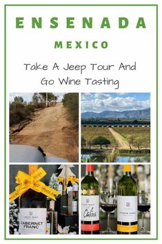 We loved our visit to #Ensenada in the #Guadalupe Valley. A great spot for a #jeep tour and #wine tasting adventure. Best Travel Guides, Travel Advice, Travel Tips, Travel Destinations, Monte Xanic, Ensenada Mexico, History Of Wine, Wine Case, Visit Mexico