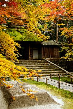 京都の秋(法然院)/Hounen-in temple   20111201-DSC09060 京都市左京区法然院(Hou…   Flickr