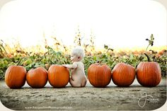 Puts a whole new meaning to calling max my pumpkin butt, I am SO taking this pic… - BABY PICTURES Fall Baby Pictures, Fall Family Photos, Holiday Pictures, Fall Pics, Fall Baby Pics, Baby Pumpkin Pictures, Outdoor Baby Pictures, Pumpkin Pics, 6 Month Baby Picture Ideas Boy