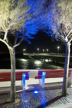 Le Moulleau by night