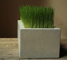 Beton / Holz Pflanzgefäß Bench von TaoConcrete auf Etsy | Garten ...