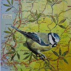 Schilderij Pimpelmees landkaart NIEUW