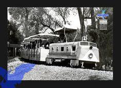 Trenecito del parque Hidalgo foto de los 80´s