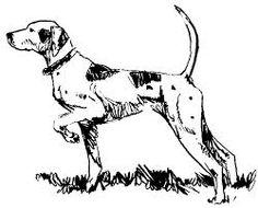 Good GSP Dog Image Sketch   Google Search