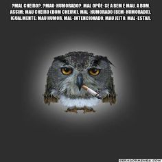 Quote Posters, Bird, Funny, Animals, Bullshit, Owls, Dubai, Quotes, Social Media