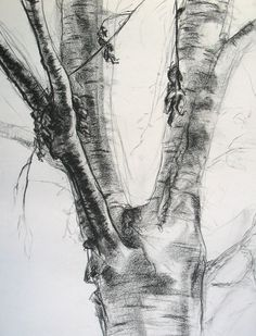 Trees 1 Charcoal Landscape Drawing 18x24 Original by lumafineart, $125.00