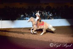 Fort Worth Stock Show Rodeo Finals night performance 2/9/13  (c)CydByrd