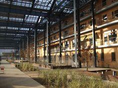 Jardin Rosa Luxemburg