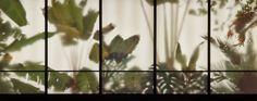 Sembra una pianta ma è una lampada: tra design e arte