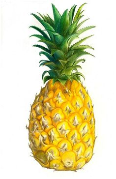 perfect pineapple