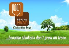 Meat Made From Plants - Beyond Meat, Index: Award 2013 Finalist 8/20/13