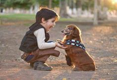 han and chewie, bffs