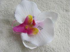 Wesega / Biela orchidea II.