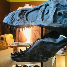 Our Tyrannosaurus Rex sure does miss your company and posing for pictures! We look forward to seeing you soon! Tyrannosaurus Rex, Looking Forward To Seeing You, Hiking Boots, Combat Boots, Fun, Pictures, Shoes, Instagram, Fashion
