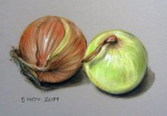 onions111105 Scientific Drawing, Art School, Onions, Colored Pencils, Art Lessons, Still Life, Pastel, Drawings, Illustration