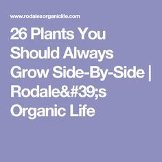 26 Plants You Should Always Grow Side-By-Side | Rodale's Organic Life