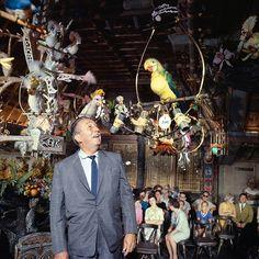 Disney Photos, Archives, Disney Land