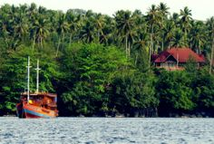 Lembeh Straits, Indonesia #LiveAboard. The magic of #diving a few feet from your bed!