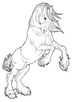 Clydesdale Stallion by AppleHunter.deviantart.com on @deviantART