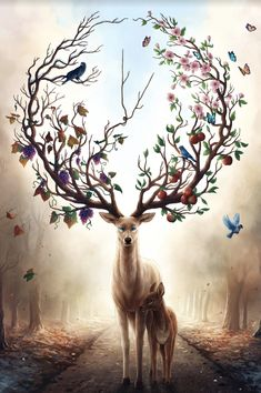 Seasons Change - Signed Art Print - Fantasy Deer Painting - Spring Summer Fall Winter - by Jonas Jödicke Mythical Creatures Art, Fantasy Creatures, Cute Animal Drawings, Cute Drawings, Deer Art, Fantasy Artwork, Fantasy Paintings, Deer Paintings, Amazing Art