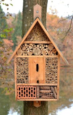 Build an insect hotel yourself - detailed building instructions for environmentally conscious hobby gardeners! - Build an insect hotel yourself – detailed building instructions for environmentally conscious hob - Bug Hotel, Carpenter Bee Trap, Mason Bees, Bee House, Garden Insects, Bee Friendly, Winter Project, Fence Art, Bird Boxes