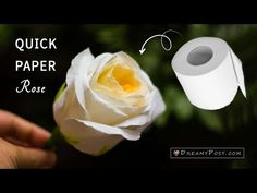This quick way to make a paper rose will show you step by step instruction to make paper flowers from toilet paper and other simple suppliers. flowers step by step How to make a toilet paper rose ,so quick and realistic Toilet Paper Flowers, Paper Flowers Craft, How To Make Paper Flowers, Large Paper Flowers, Paper Flowers Wedding, Crepe Paper Flowers, Paper Flower Backdrop, Diy Flowers, Paper Flower Arrangements