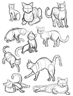 Imagen de cat, drawing, and art
