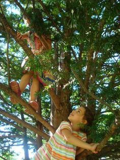 Climbing trees. When was the last time you saw a kid in a tree? I feel sad for this electronic generation.